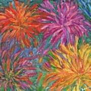 Chrysanthemums Like Fireworks Poster