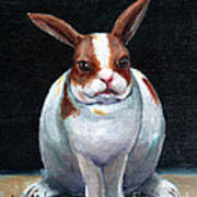 Chubby Bunnie Poster by Linda L Martin