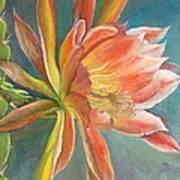 Cierge en Fleur Poster