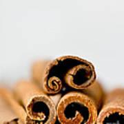 Cinnamons And Clove Poster