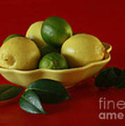 Citrus Passion Poster