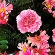 Carnations The Spanish Flower Poster