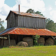 Clewis Family Tobacco Barn Poster by Suzanne Gaff