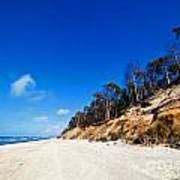 Cliffs On A Sunny Beach Poster