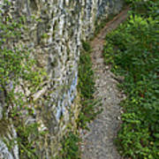 Cliffside Path Poster