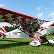 Clipped Wing Cub Poster
