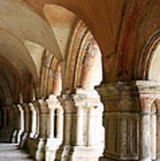 Cloister In Fontenay Abbey, France Poster