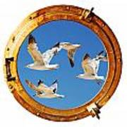 Close-up Of A Boat Closed Porthole With Flying Seagull On The White Background Poster