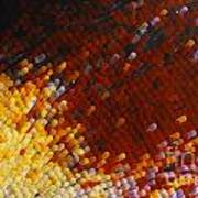 Extreme Close Up Of A Butterfly's Wing Poster