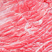 Close Up Of Raw Meat, Studio Shot Poster