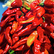 Close-up Of Red Chilies, Taos, New Poster