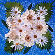 Close Up Of White Daisy Bouquet Poster