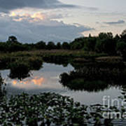 Clouds Over Green Cay Wetlands Poster by Mark Newman