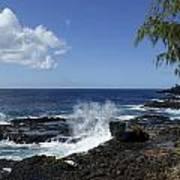 Coast Of Kauai Poster