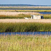 Coastal Marshlands With Old Fishing Boat Poster by Bill Swindaman