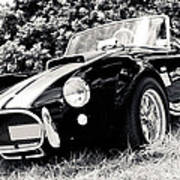 Cobra Sports Car Poster by Phil 'motography' Clark