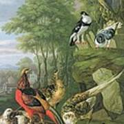 Cock Pheasant Hen Pheasant And Chicks And Other Birds In A Classical Landscape Poster