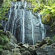 Coco Falls - El Yunque Poster