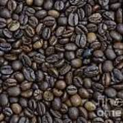 Coffee  Poster by Bobby Mandal