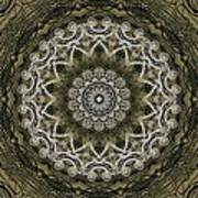 Coffee Flowers 6 Olive Ornate Medallion Poster