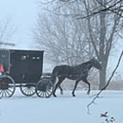 Cold Amish Morning Poster