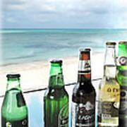 Cold Beers In Paradise Poster by Joan  Minchak