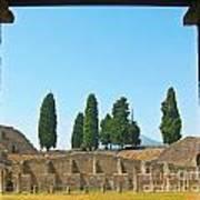 Coliseum At Pompeii Poster