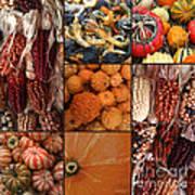 Collage - Corn - Pumpkins - Gourds - Elena Yakubovich Poster