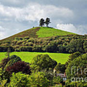 Colmers Hill At Symondsbury Poster