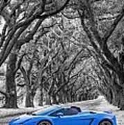 Color Your World - Lamborghini Gallardo Poster by Steve Harrington