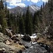 Colorado Wild Poster