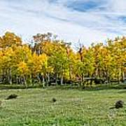 Colorado Fall Panorama Poster by Baywest Imaging