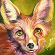Colorado Fox Poster