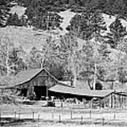 Colorado Rocky Mountain Barn Bw Poster
