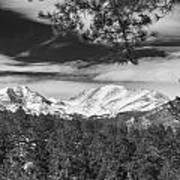 Colorado Rocky Mountain View Black And White Poster
