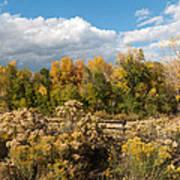 Colorado Urban Autumn Landscape Poster