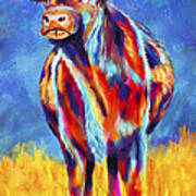 Colorful Angus Cow Poster