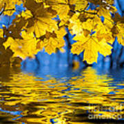 Colorful Autumn Leaves Poster by Boon Mee