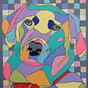 Colorful Dog Bear Poster