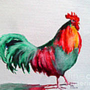 Colorful Chicken Poster