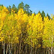Colorful Colorado 2 Poster