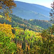 Colorful Colorado Poster by Brian Harig