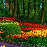 Colorful Corner Of The Keukenhof Garden 4. Tulips Display. Netherlands Poster