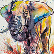 Colorful Elephant Poster