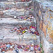 Colorful Fall Leaves Autumn Stone Steps Old Mentone Inn Alabama Poster