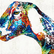 Colorful Goat Art By Sharon Cummings Poster