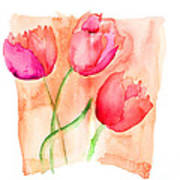 Colorful Illustration Of Red Tulips Flowers  Poster