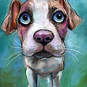 Colorful Pit Bull Puppy With Blue Eyes Painting  Poster by Svetlana Novikova