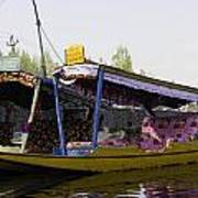 Colorful Shikaras Tied Up Next To The Dal Lake In Srinagar Poster