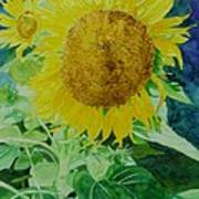 Colorful Sunflowers Watercolor Original Sunflower Art Poster